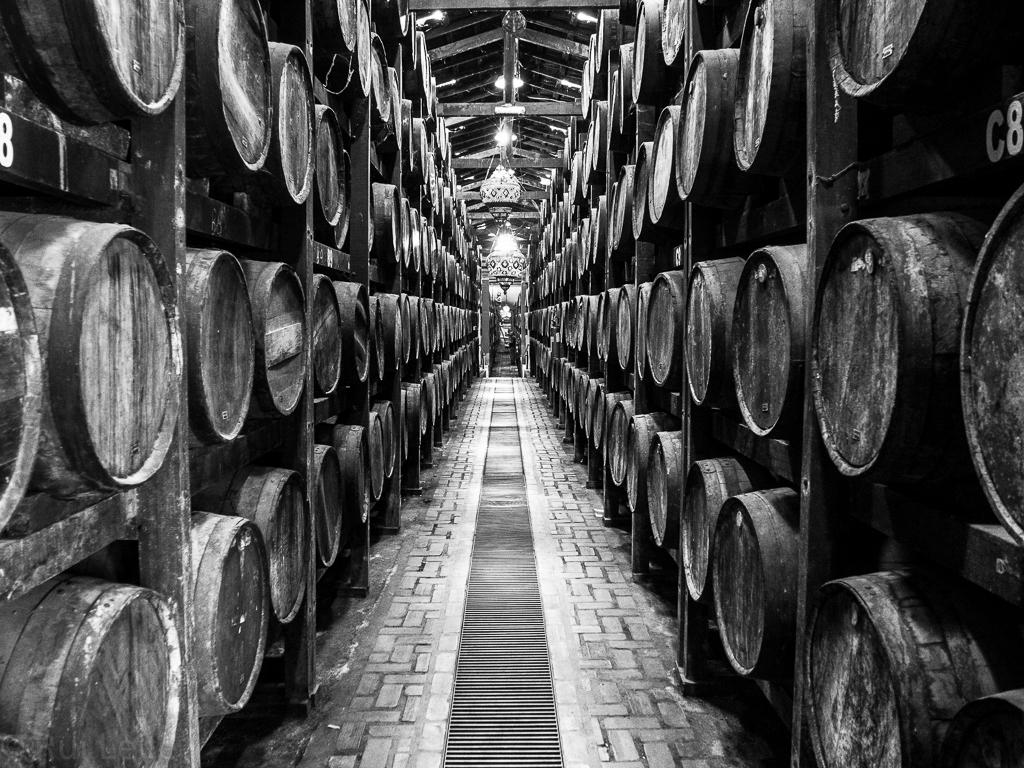 Old oak casks